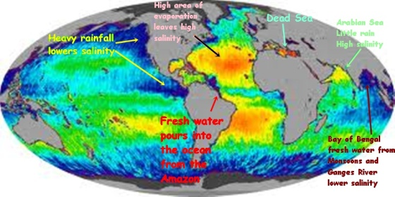 World map of salt measurement