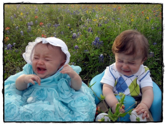 babies sitting in bluebonnets