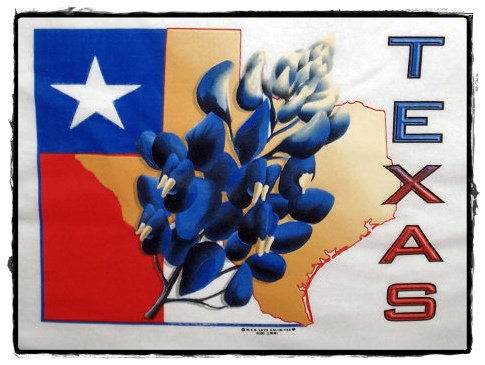 bluebonnet texas state flower