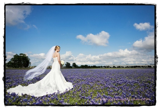 Bride in bluebonnets