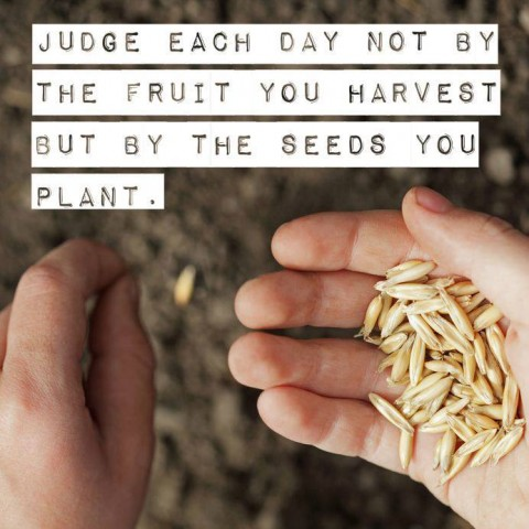 judge each day
