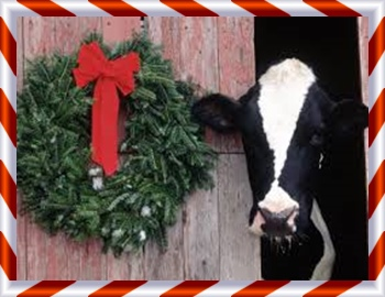 cow and wreath