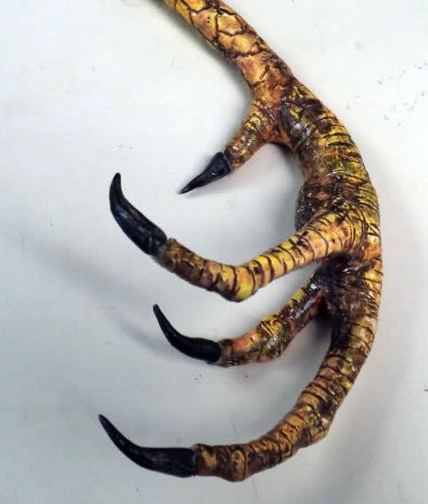 voodoo claw